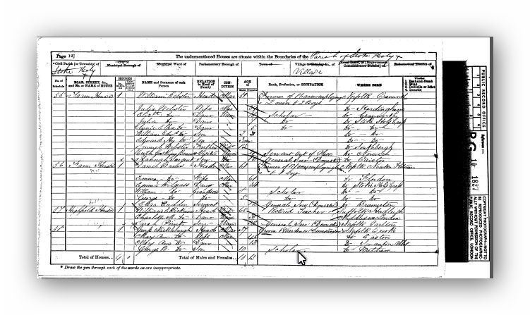 1871 Census of England and Wales, Norfolk - Annie Ellen Webster
