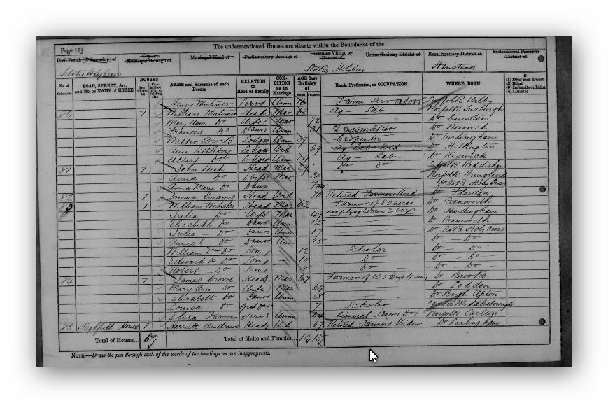 1881 Census of England and Wales - Norfolk England - Annie Ellen Webster